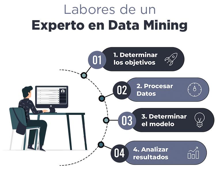 labores-experto-mineria-de-datos
