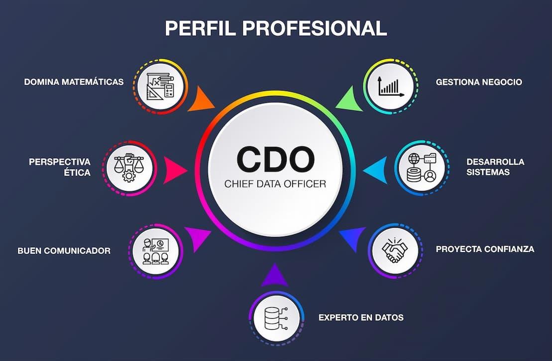 rasgos-profesionales-para-ser-Director-de-Datos.jpg